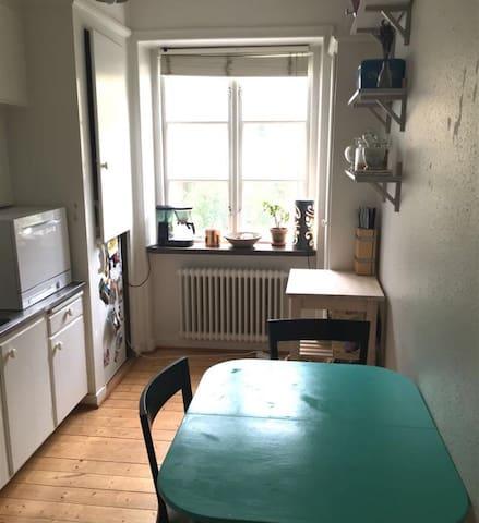 Mysig lägenhet i centrala Malmö - มัลโม - อพาร์ทเมนท์