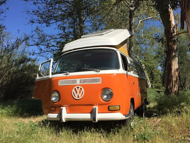 Vintage Van Set in Nature Near Beach & Ojai