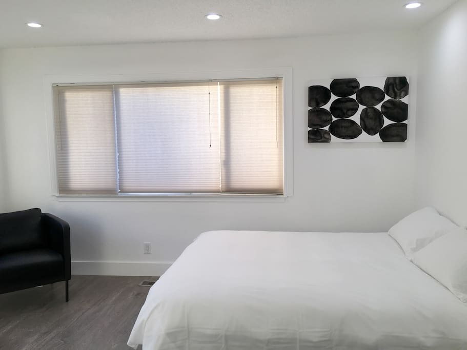 Large spacious room with queen bed and plenty of sunlight