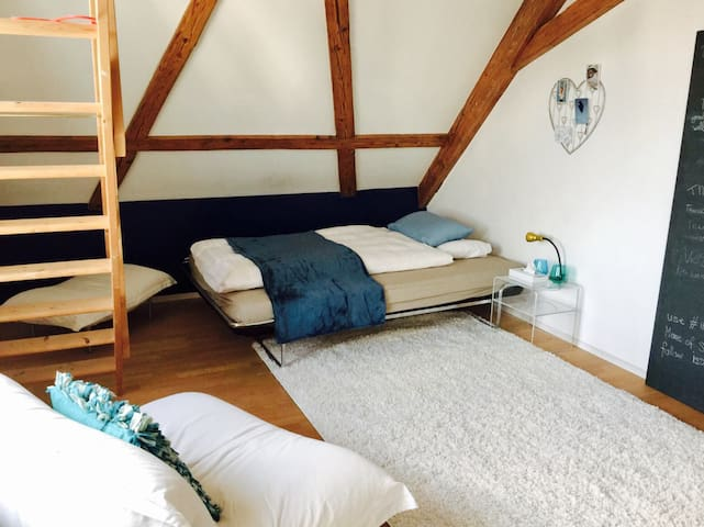 Charming Attic Room with Lakeview - 基爾希伯格(Kilchberg) - 公寓
