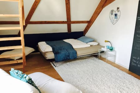 Charming Attic Room with Lakeview - Kilchberg - Apartament