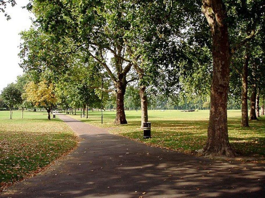 Hackney Downs Park across the road