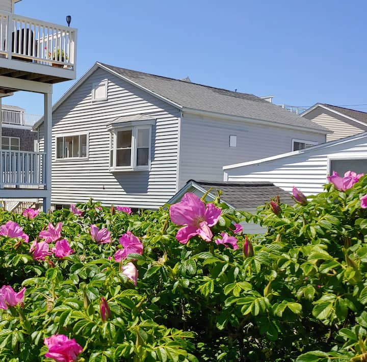 2 Bedroom Beach Bungalow, Steps from the Beach!