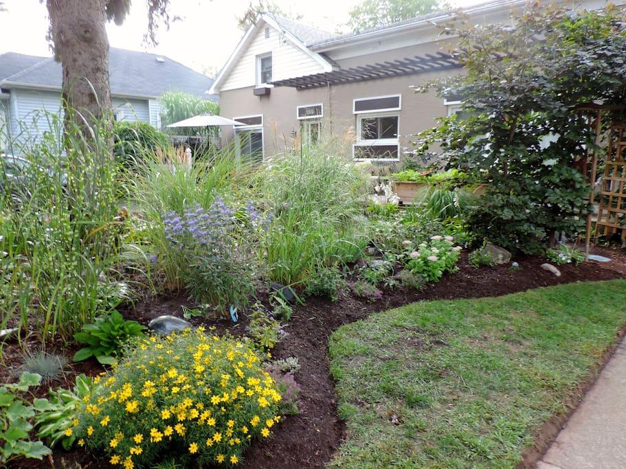 Garden in front
