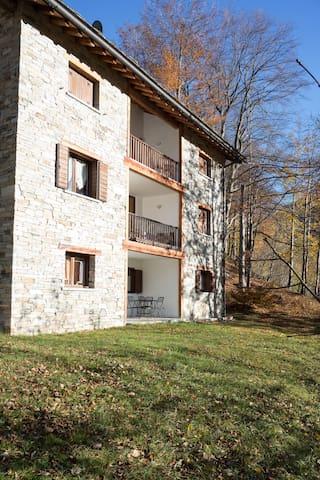 Casa di Charme MonteRosa Ski & Rafting - Riva Valdobbia - Apartment