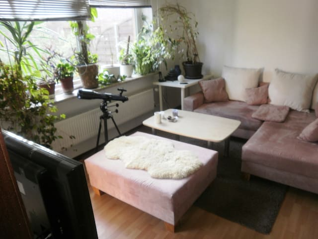 Erholung pur in vielfältiger Künstlerwohnung - Burg (Dithmarschen) - Appartement