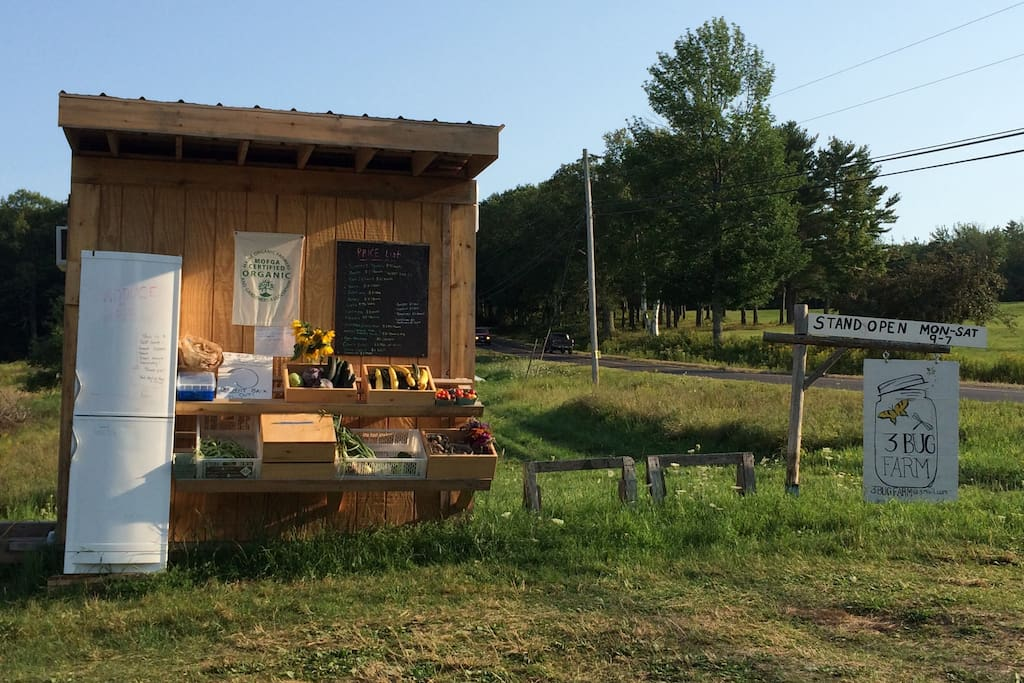 Lots of roadside vegetable and fruit and flower stands that are the flavor of Maine!