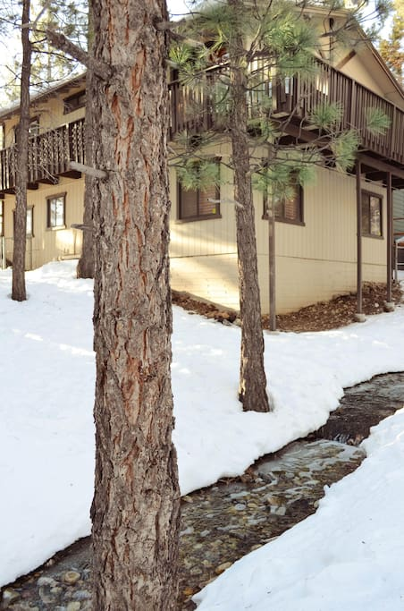 Cozy Family Friendly Cabin Mountain Big Bear Lake Houses