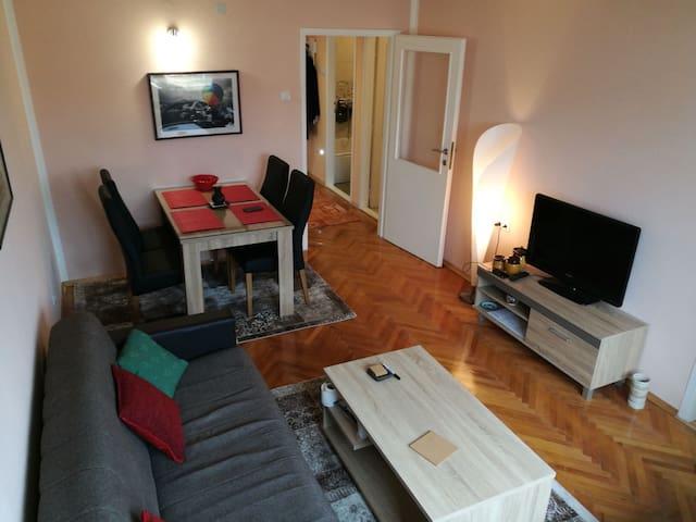 Sarajevo riverside apartment - Sarajevska županija - Apartment