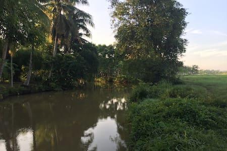 Love Nature Home
