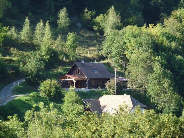 Joli Chalet Routes des Crêtes Vosges - Lautenbach-Zell - กระท่อมบนภูเขา