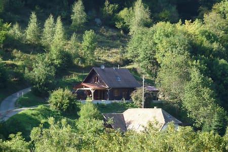 Joli Chalet 3*  Routes des Crêtes Vosges