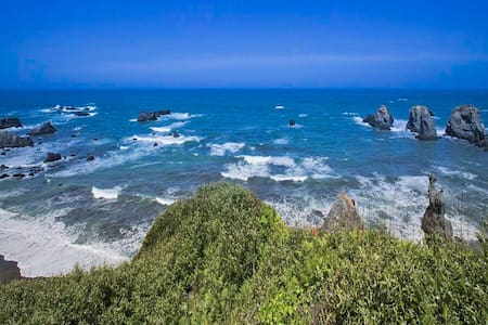 Pristine Mendocino Coast Oceanfront home + hot tub