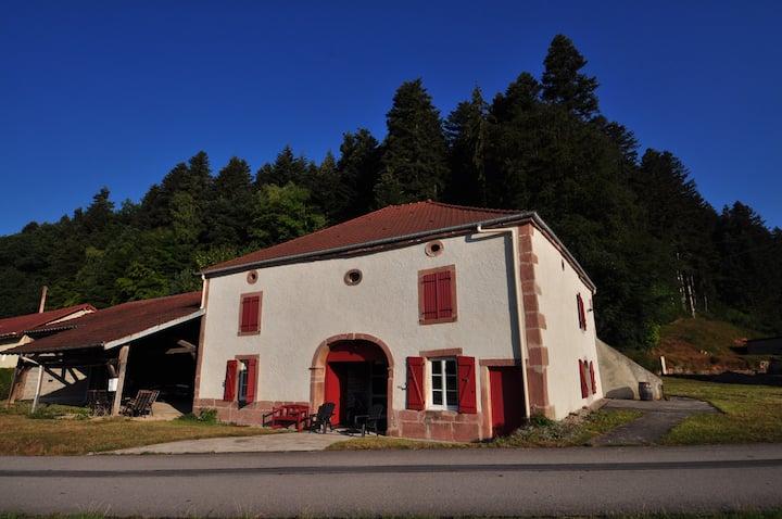 Maison  jusqu'à 10 personnes au coeur des Vosges