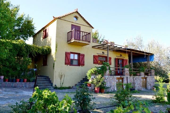 Ampeli Villas - Niselia - Huis
