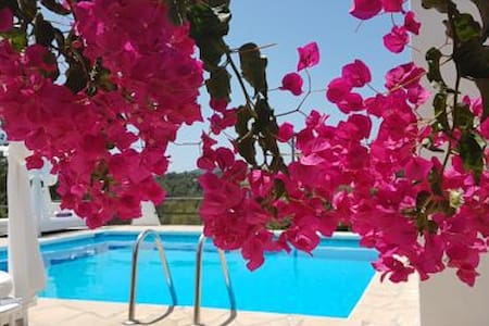 habitacion doble standar - Eivissa