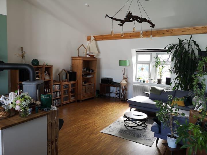 Spacious 2-bedroom apartment Hechtviertel