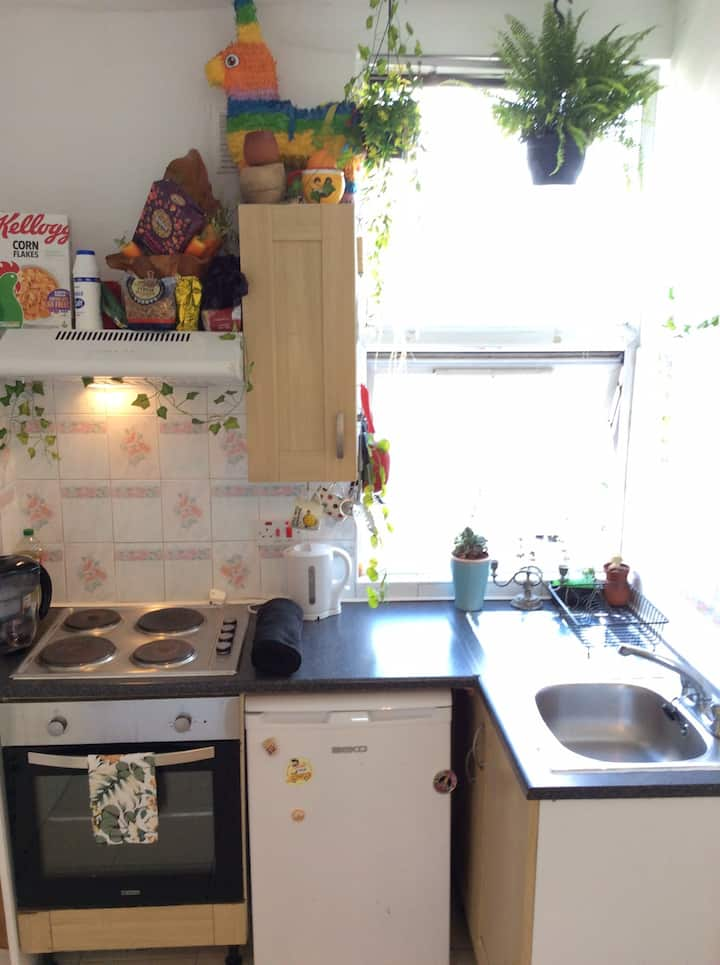 LOVELY shoreditch London zone 1 fab studio flat! X