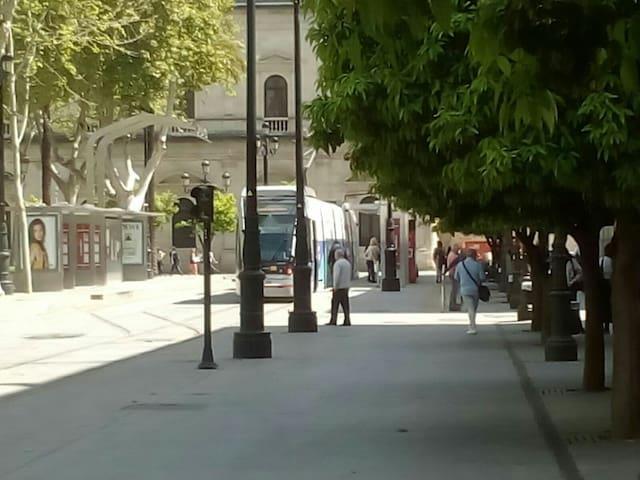 Alquiler para Semana Santa y Feria - Sevilla - Apartment