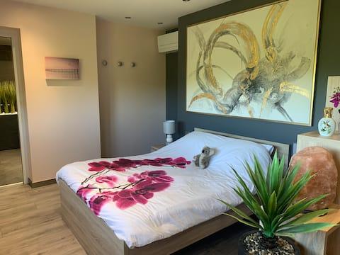 Suite de standing, entrée&garage privés/LONS LE SR