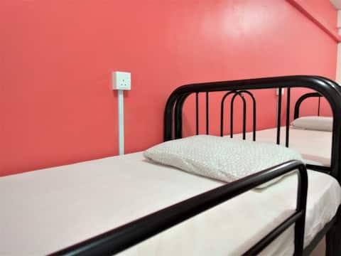 6-Bed Dorm at Borneo Sandakan Backpackers