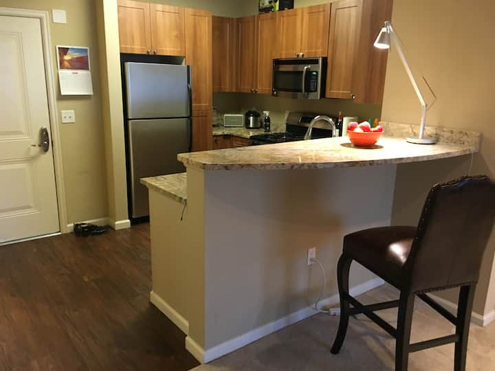 Great One-Bedroom Apartment in North San Jose