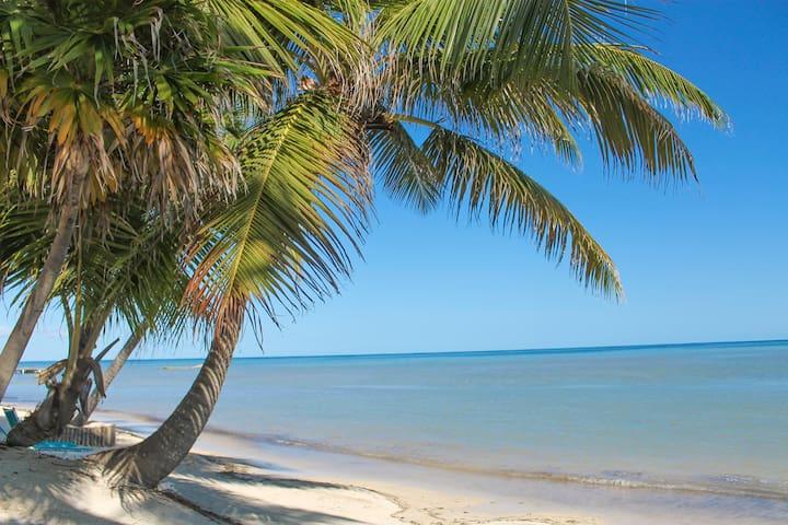 Amazing Beach Condo (21B), up to 4, Sea View, Wifi