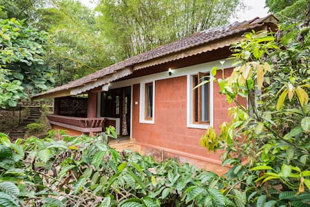 Honeymoon cottages in coffee plantation - Wayanad