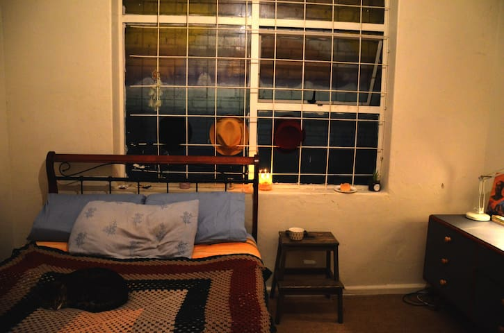 Cosy, friendly space in the heart of Newtown