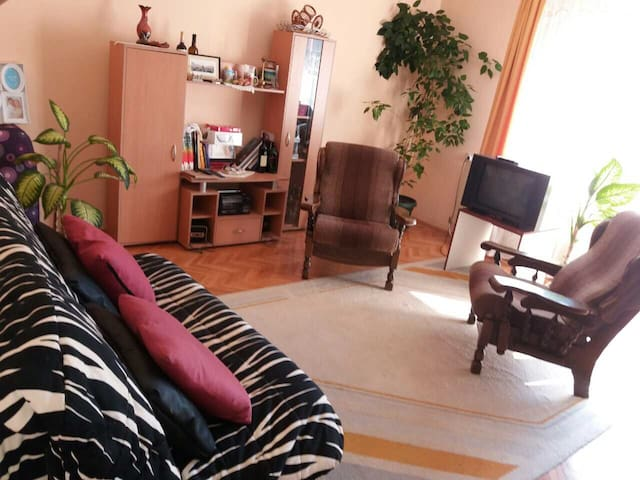 Lola's home, quiet, close to St. Sava & Chair Park - Niš - Şehir evi