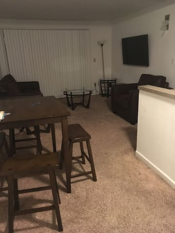 Condo Apartment near UIUC