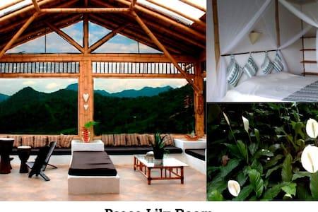 EcoHouse - Peace Lily Room - La Vega - Bed & Breakfast