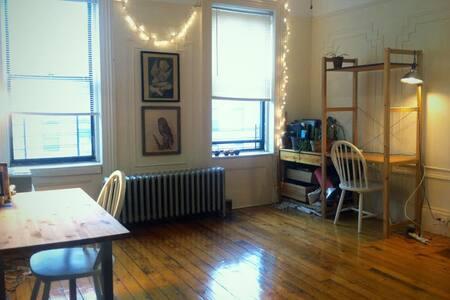 Cozy room in Williamsburg - Apartment