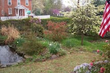 Spring time view from veranda in March