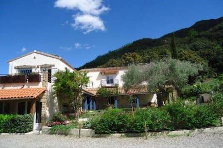 Villa Mandarine - Arles-sur-Tech - Bed & Breakfast
