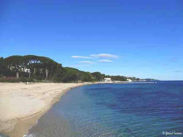 🌞 jolie T3 à proximité des plages de grimaud 🌞