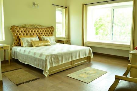 42 Green Pastures- Emerald - Nilgiris