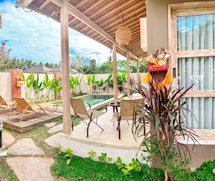 Brand New Private Pool Rice Field View Villa