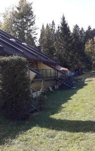 Casa vacanze tra i boschi trentini