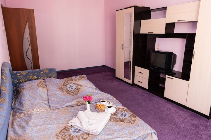 Уютные апартаменты на Заводской
