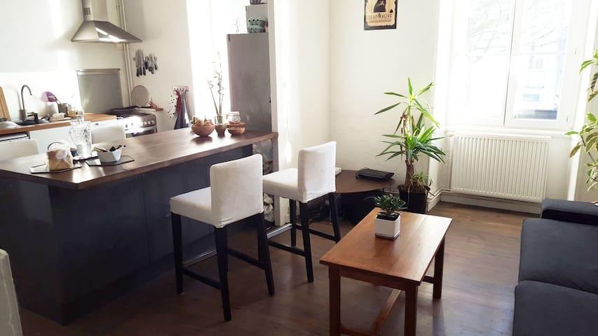 Bel appartement sur l'île de Nantes - Nantes - Huoneisto