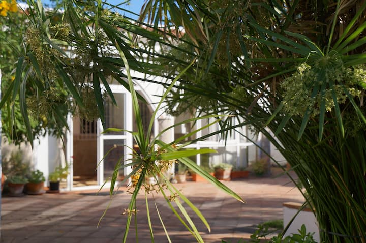Casa de campo and pool