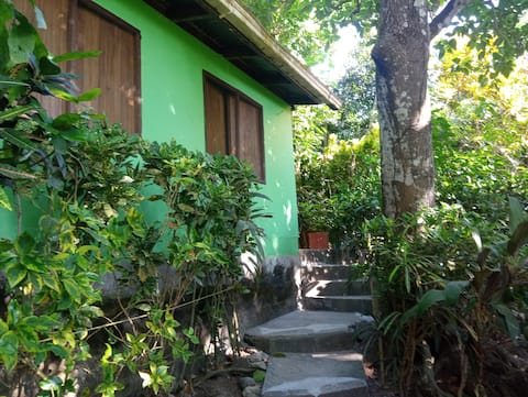 Jungle house near the beach
