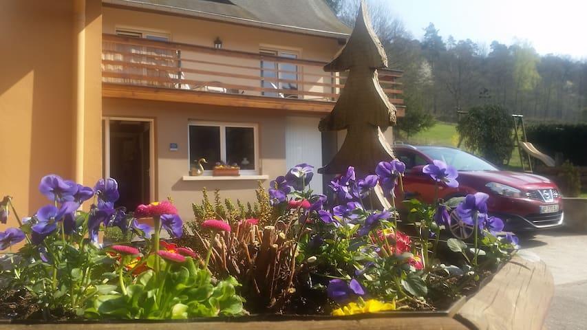 Maison de vacances **** en Alsace - Dambach / Wineckerthal - Casa