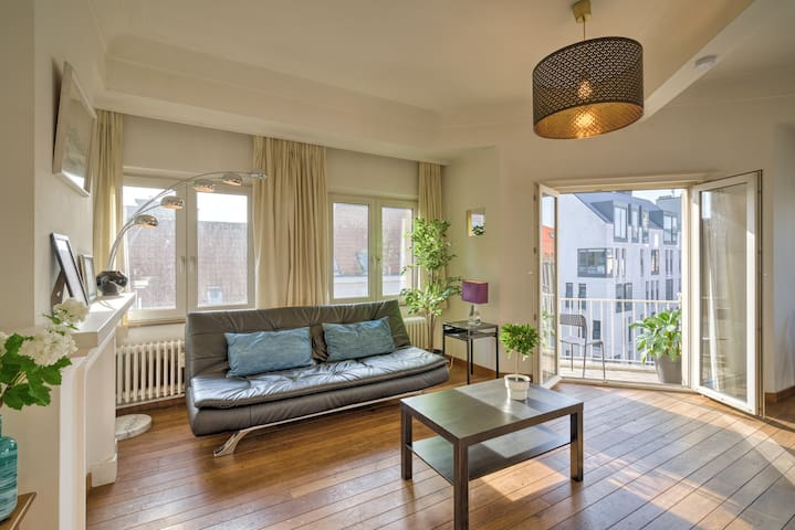 Spacious Apartments in the Center of Antwerp 1L
