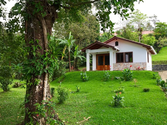 Gorgeous Lake Arenal - Casita 1 - Nuevo Arenal - House