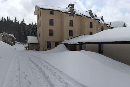 Apartman na sjezdovce v Peci pod Sněžkou - Pec pod Sněžkou