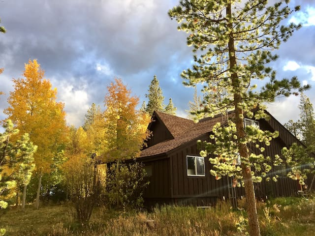 Fabulous Cabin, 4 Acres, Hot Tub, Firepits, Views!
