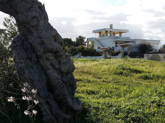 Villa Monopoli, fraz Capitolo, Bari - Monopoli - Casa de campo