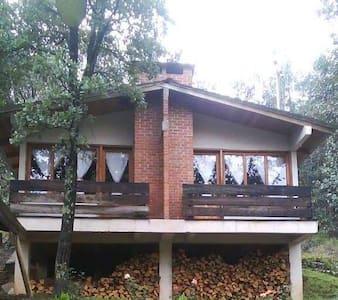 Cabaña-Habitación Los Bosques del Zembo